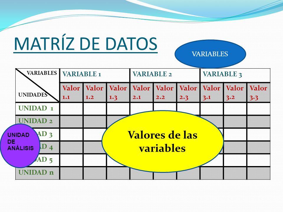 MATRÍZ DE DATOS VARIABLES UNIDADES VARIABLE 1VARIABLE 2VARIABLE 3 Valor 1.1 Valor 1.2 Valor 1.3 Valor 2.1 Valor 2.2 Valor 2.3 Valor 3.1 Valor 3.2 Valo
