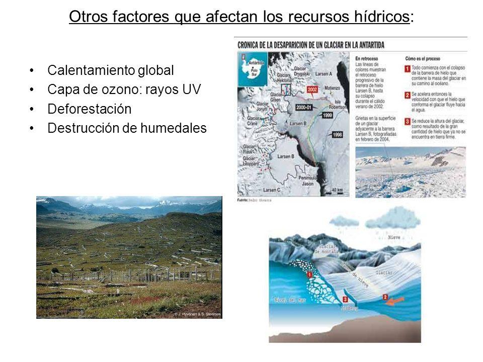 Otros factores que afectan los recursos hídricos: Calentamiento global Capa de ozono: rayos UV Deforestación Destrucción de humedales