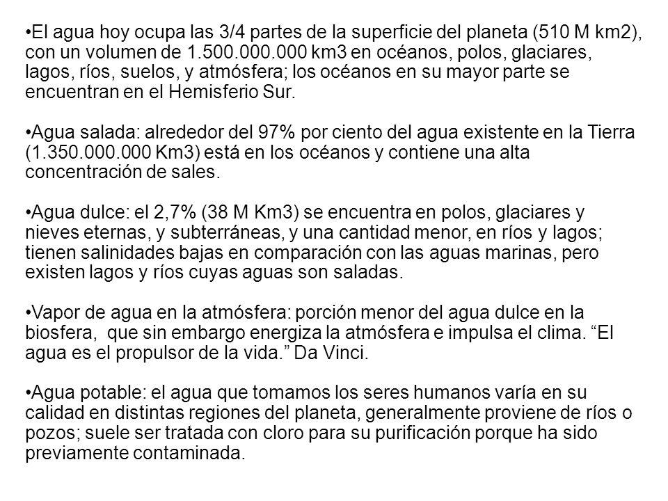 Concentración de la Propiedad del agua: Uso No Consuntivo (principalmente para generación de electricidad) Fuente: Crisis y Sustentabilidad en la Gestión de las Aguas en Chile, Chile Sustentable, 2004