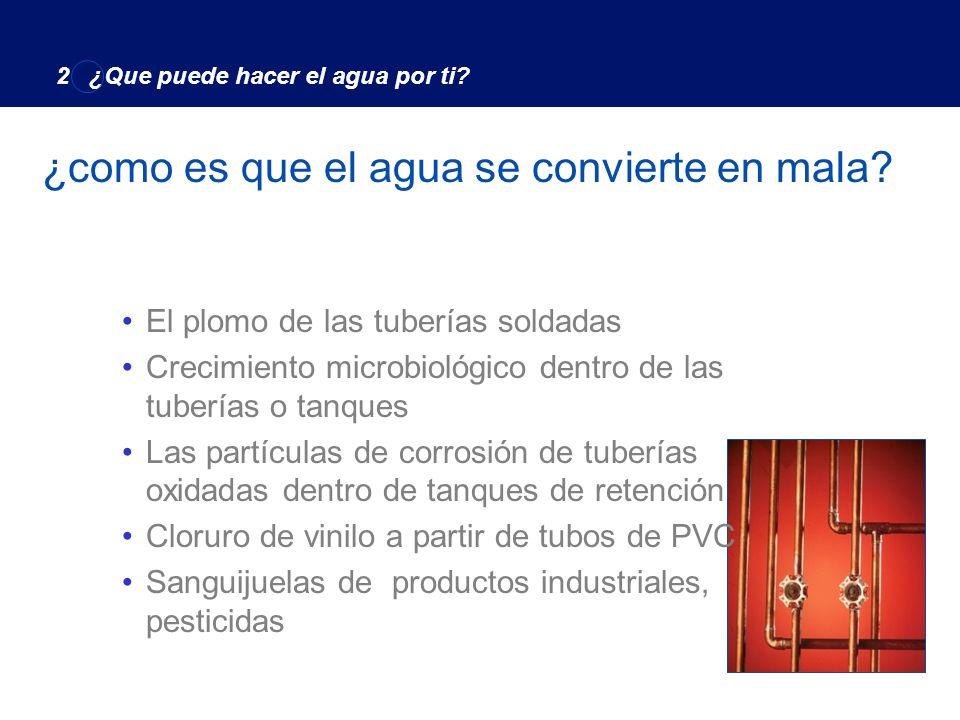 Organismos MicroscópicosBacterias and Virus Contaminación Microbiológica 2 ¿Qué puede hacer el agua por ti?