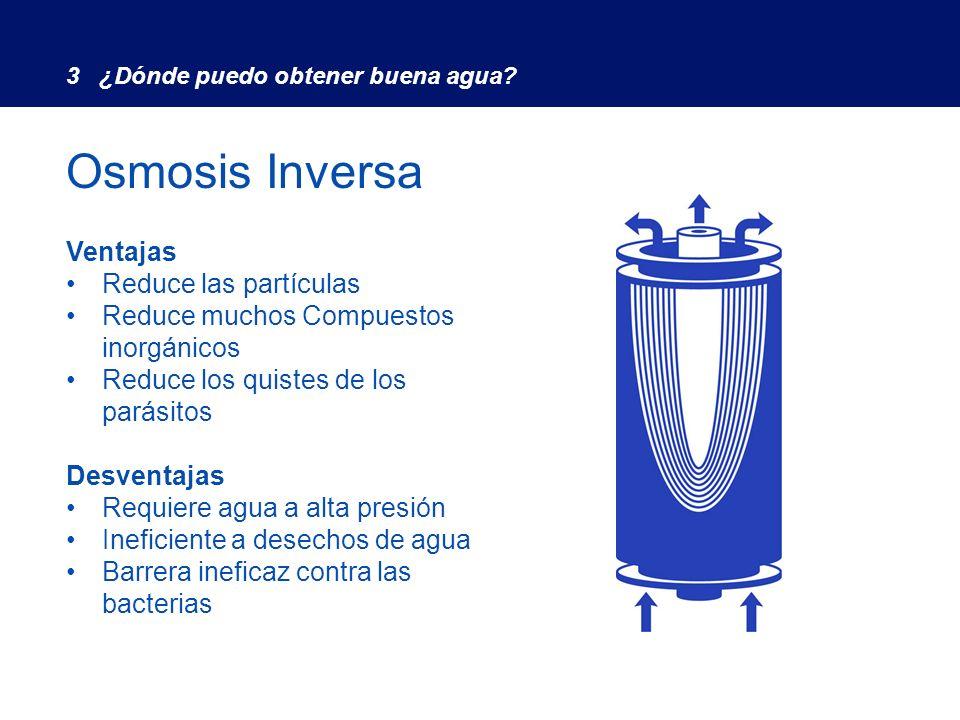 Advantages Ventajas Puede inactivar bacterias y virus Desventajas inconveniente Ineficaz contra compuestos orgánicos No reduce las partículas El agua