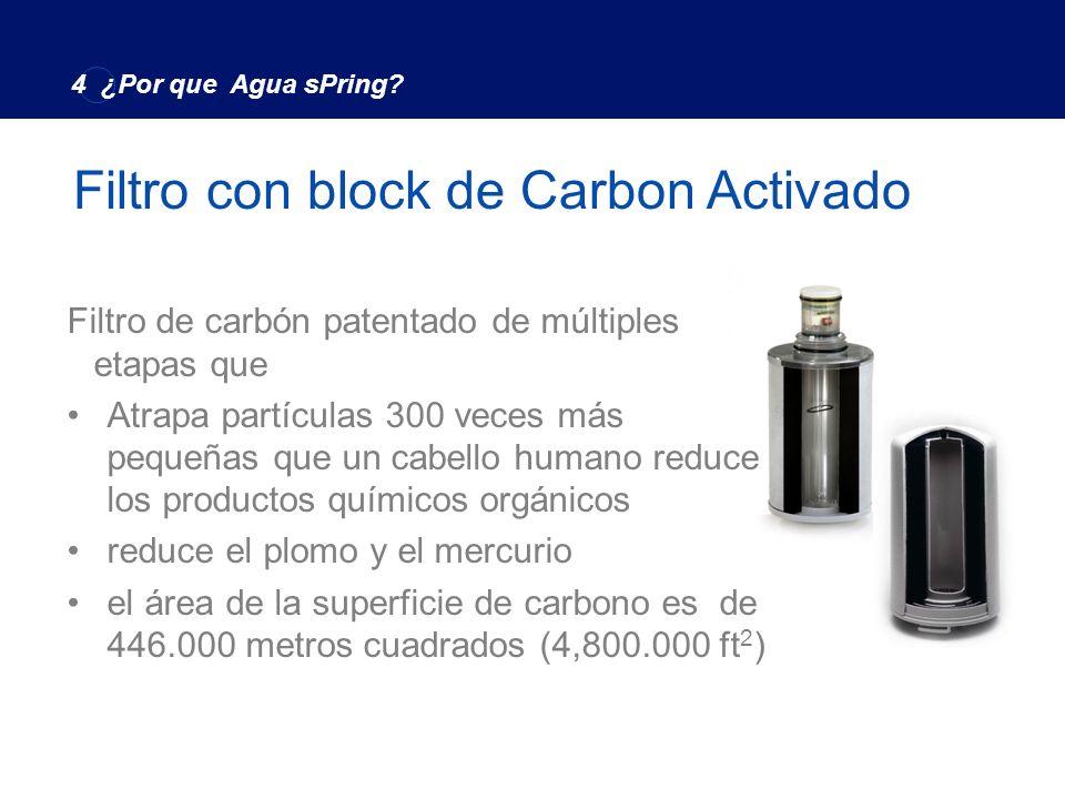 El único Sistema para Remover efectivamente más de 140 contaminantes que afectan la salud Filtro con Block de Carbon 4 ¿Por que Agua sPring?