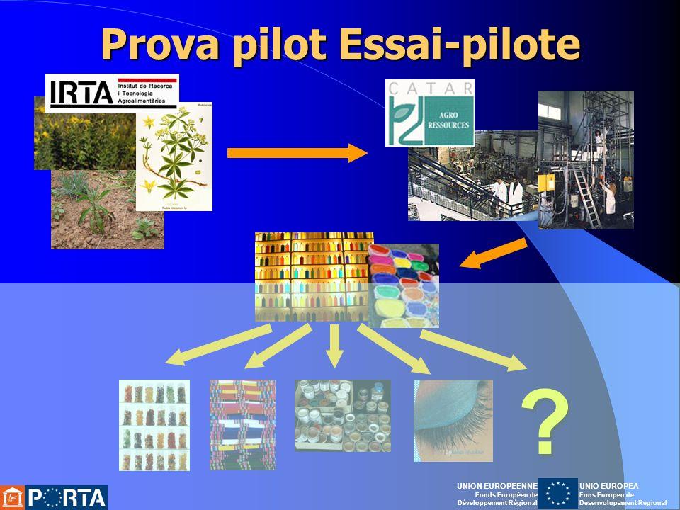 Prova pilot Essai-pilote .