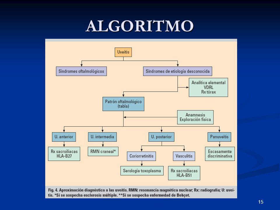 15 ALGORITMO