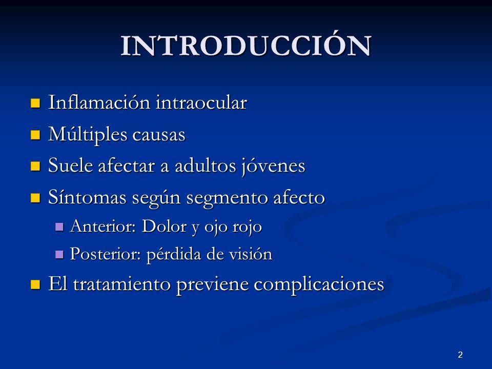 2 INTRODUCCIÓN Inflamación intraocular Inflamación intraocular Múltiples causas Múltiples causas Suele afectar a adultos jóvenes Suele afectar a adult