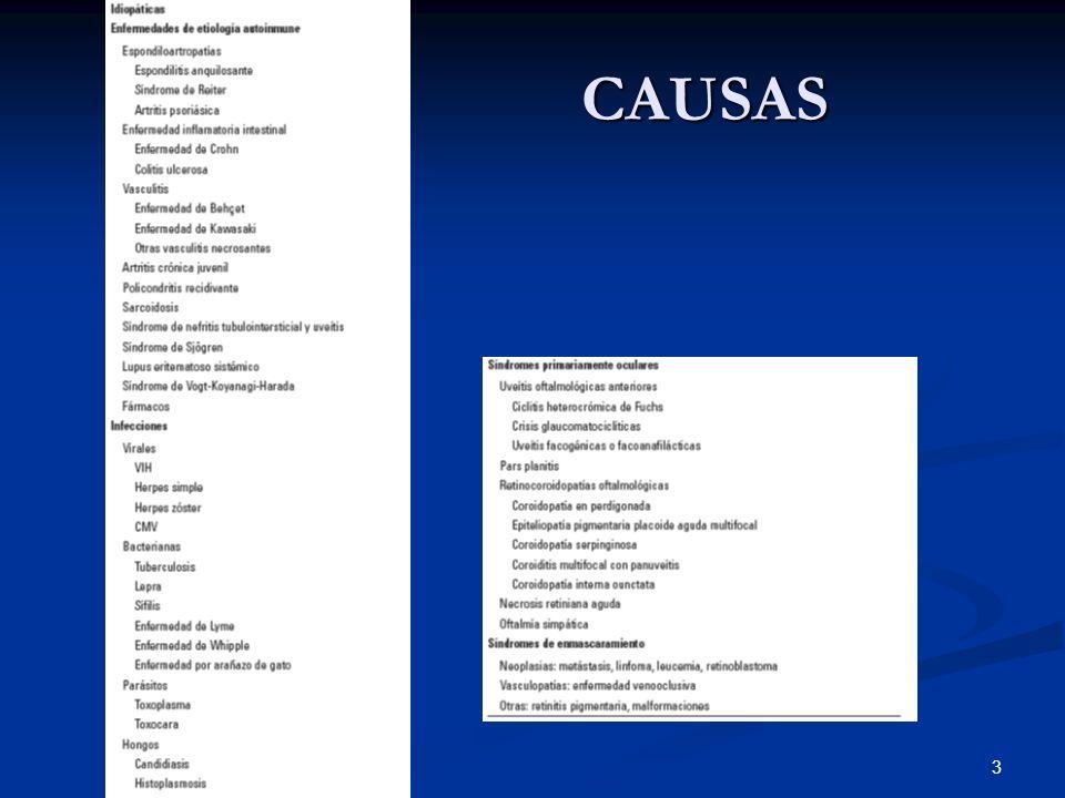 3 CAUSAS