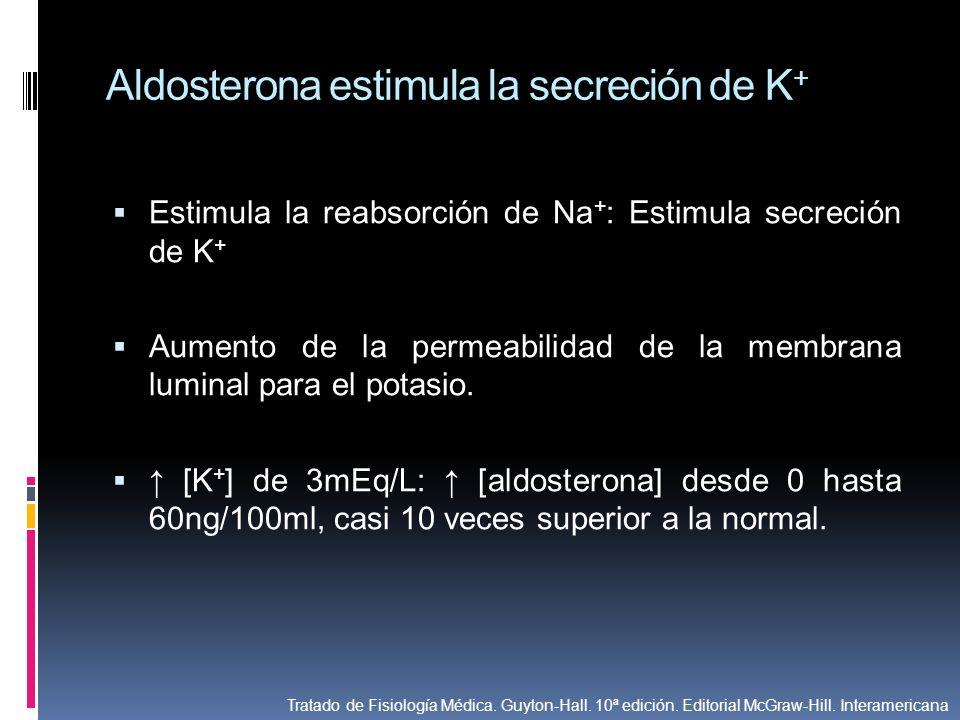 Aldosterona estimula la secreción de K + Estimula la reabsorción de Na + : Estimula secreción de K + Aumento de la permeabilidad de la membrana lumina