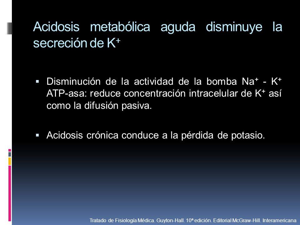 Acidosis metabólica aguda disminuye la secreción de K + Disminución de la actividad de la bomba Na + - K + ATP-asa: reduce concentración intracelular