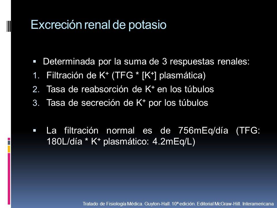 Excreción renal de potasio Determinada por la suma de 3 respuestas renales: 1. Filtración de K + (TFG * [K + ] plasmática) 2. Tasa de reabsorción de K