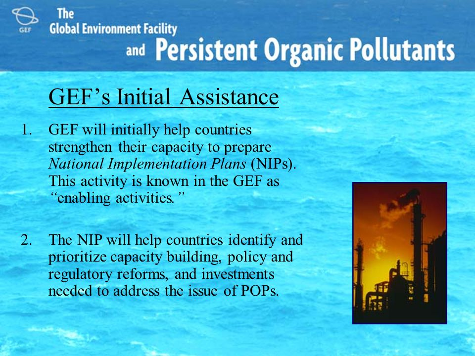 GEFs Initial Assistance 1.GEF will initially help countries strengthen their capacity to prepare National Implementation Plans (NIPs). This activity i