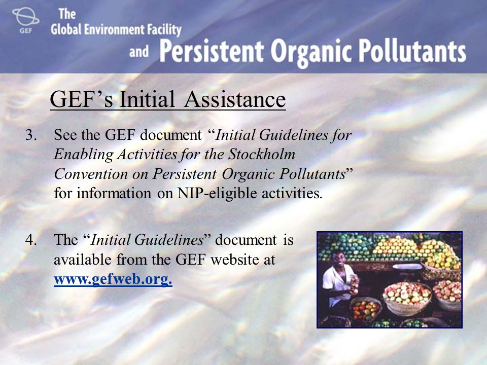 GEFs Initial Assistance 3.See the GEF document Initial Guidelines for Enabling Activities for the Stockholm Convention on Persistent Organic Pollutant