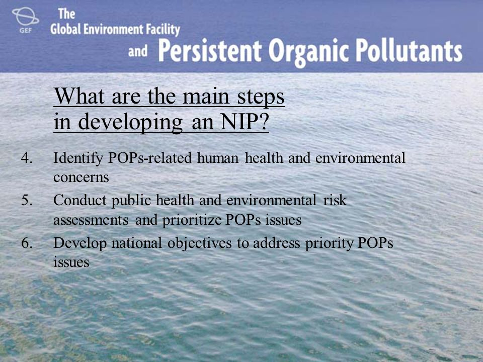4.Identify POPs-related human health and environmental concerns 5.Conduct public health and environmental risk assessments and prioritize POPs issues