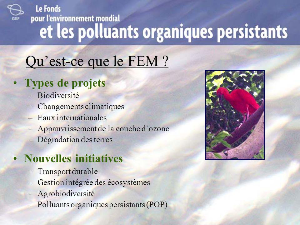 Quest-ce que le FEM ? Types de projets –Biodiversité –Changements climatiques –Eaux internationales –Appauvrissement de la couche dozone –Dégradation