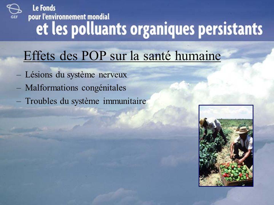 Effets des POP sur la santé humaine –Lésions du système nerveux –Malformations congénitales –Troubles du système immunitaire
