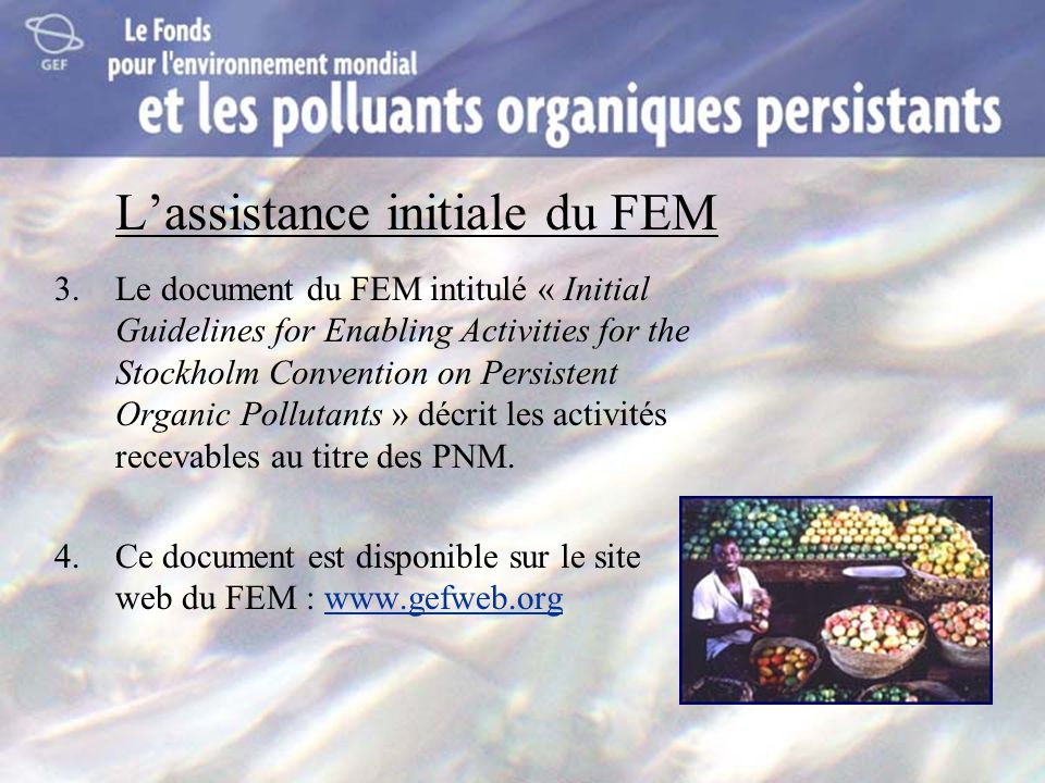 Lassistance initiale du FEM 3.Le document du FEM intitulé « Initial Guidelines for Enabling Activities for the Stockholm Convention on Persistent Orga
