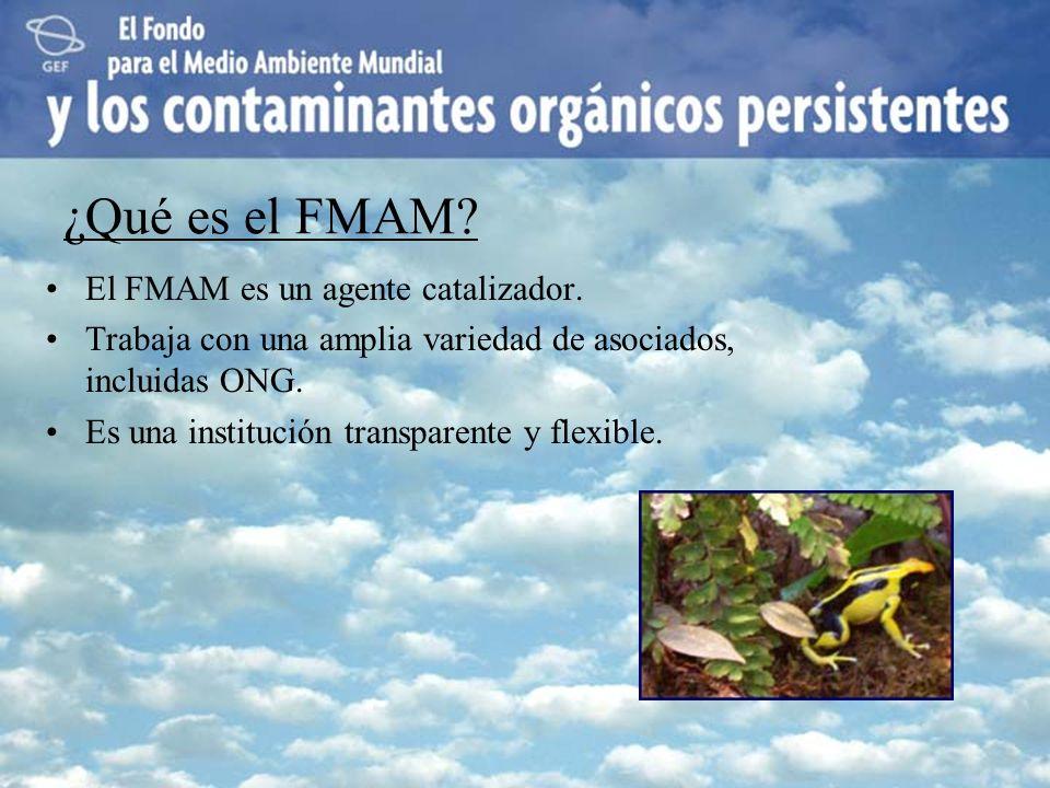 ¿Qué es el FMAM? El FMAM es un agente catalizador. Trabaja con una amplia variedad de asociados, incluidas ONG. Es una institución transparente y flex