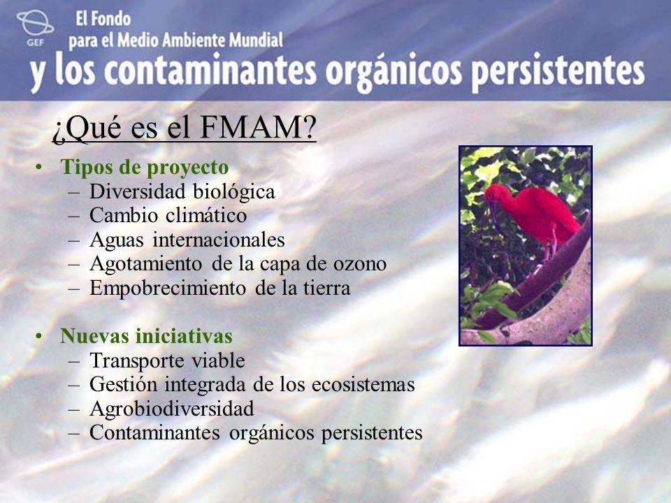 ¿Qué es el FMAM? Tipos de proyecto –Diversidad biológica –Cambio climático –Aguas internacionales –Agotamiento de la capa de ozono –Empobrecimiento de