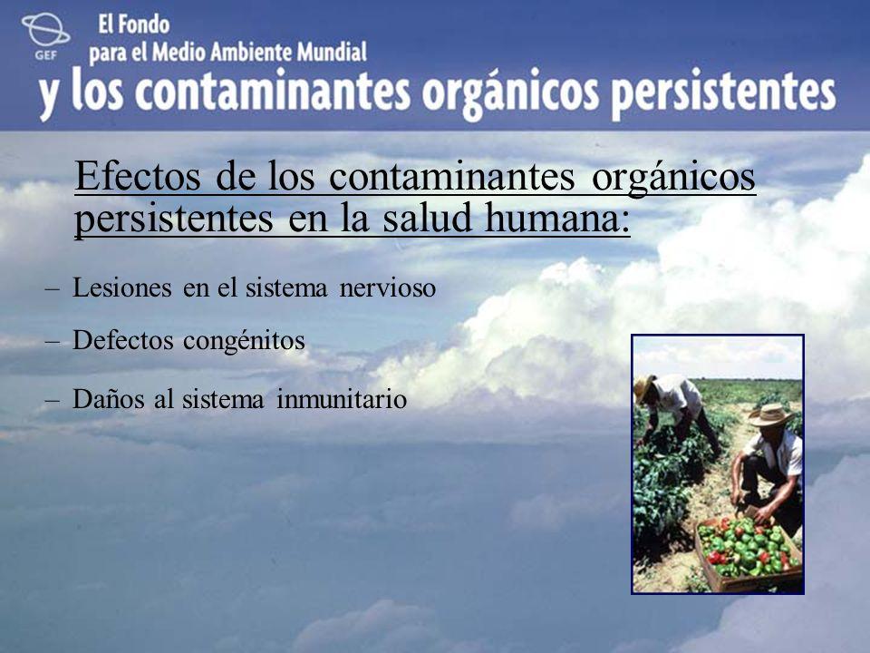 Efectos de los contaminantes orgánicos persistentes en la salud humana: –Lesiones en el sistema nervioso –Defectos congénitos –Daños al sistema inmuni