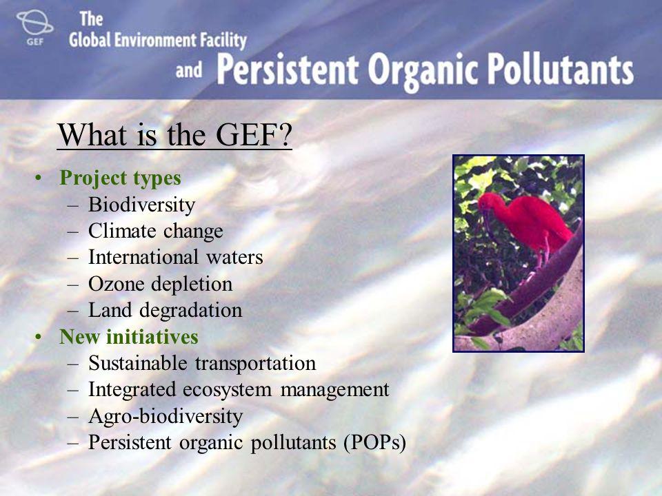 Para mayor información Enlace: Hutton Archer Global Environment Facility 1818 H Street, N.W.