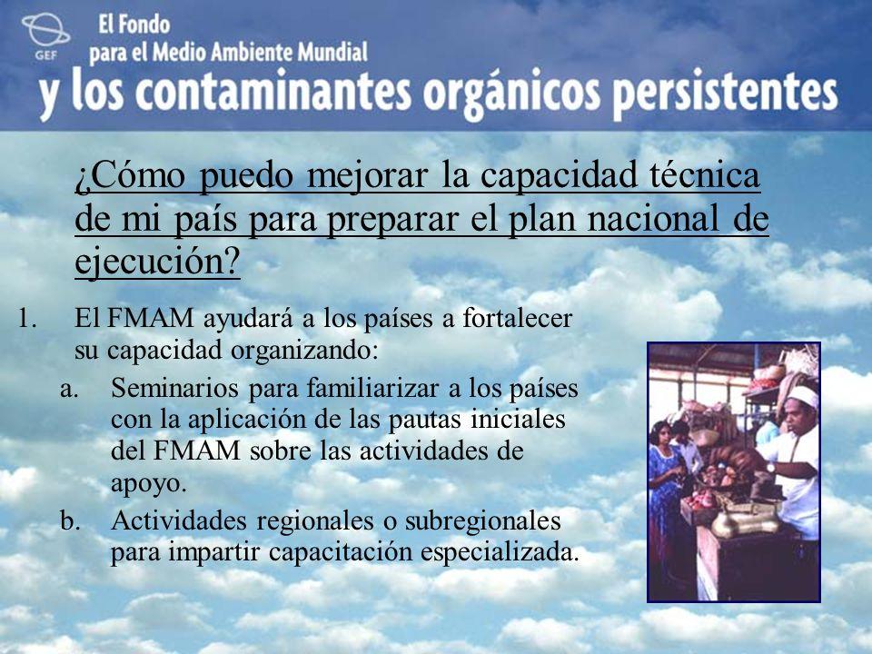 1.El FMAM ayudará a los países a fortalecer su capacidad organizando: a.Seminarios para familiarizar a los países con la aplicación de las pautas inic