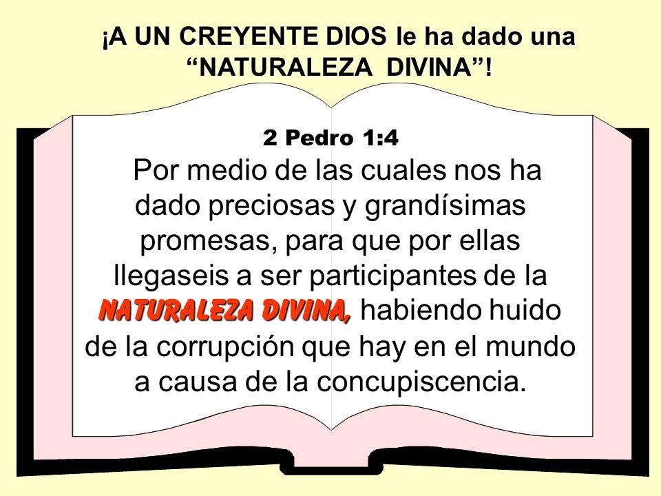 UN CREYENTE es NACIDO DE NUEVO en la familia de Dios Juan 3:3 Respondió Jesús y le dijo: De cierto, de cierto te digo, que el que no n nn naciere de n