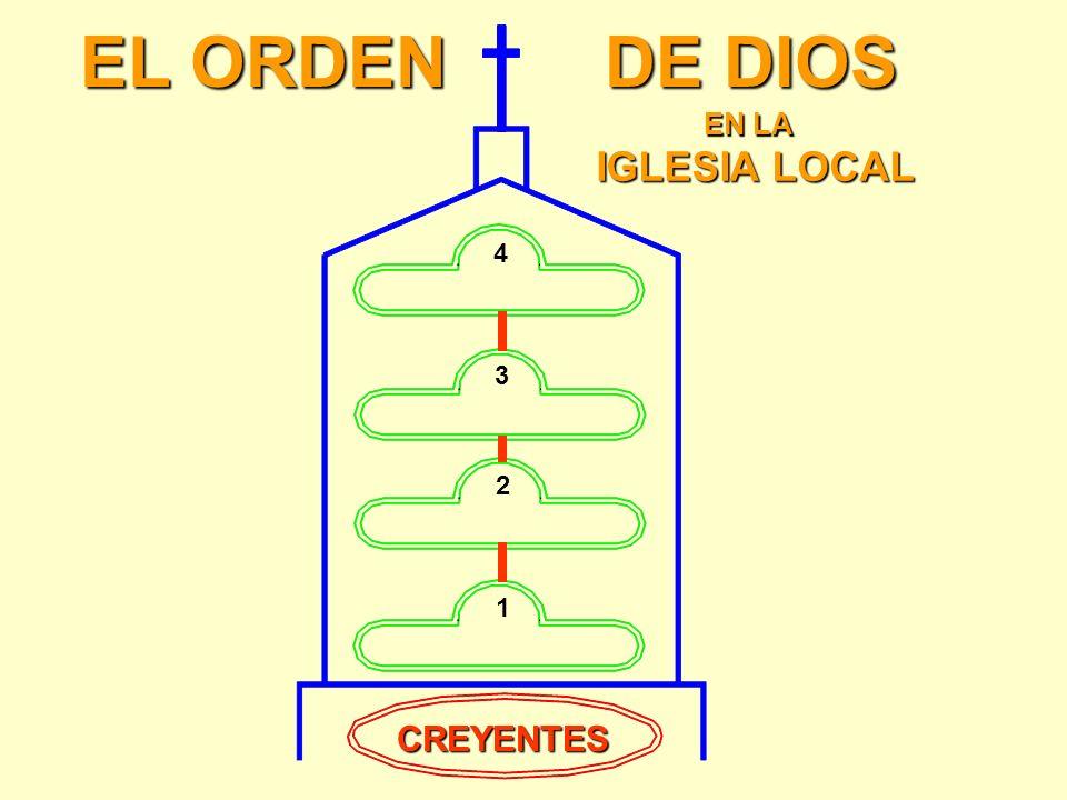 ¡UN CREYENTE es una NUEVA CREACIÓN de Dios! 2 Corintios 5:17 De modo que si alguno está en Cristo, n nn nueva criatura es; las cosas viejas pasaron; h