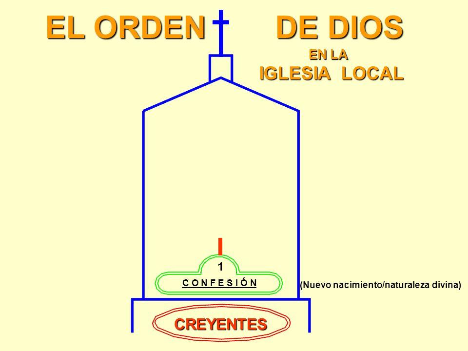 Mateo 10:32 Y a cualquiera, pues, que me confesara delante de los hombres, yo también le confesaré delante de mi Padre que está en los cielos. JESÚS D