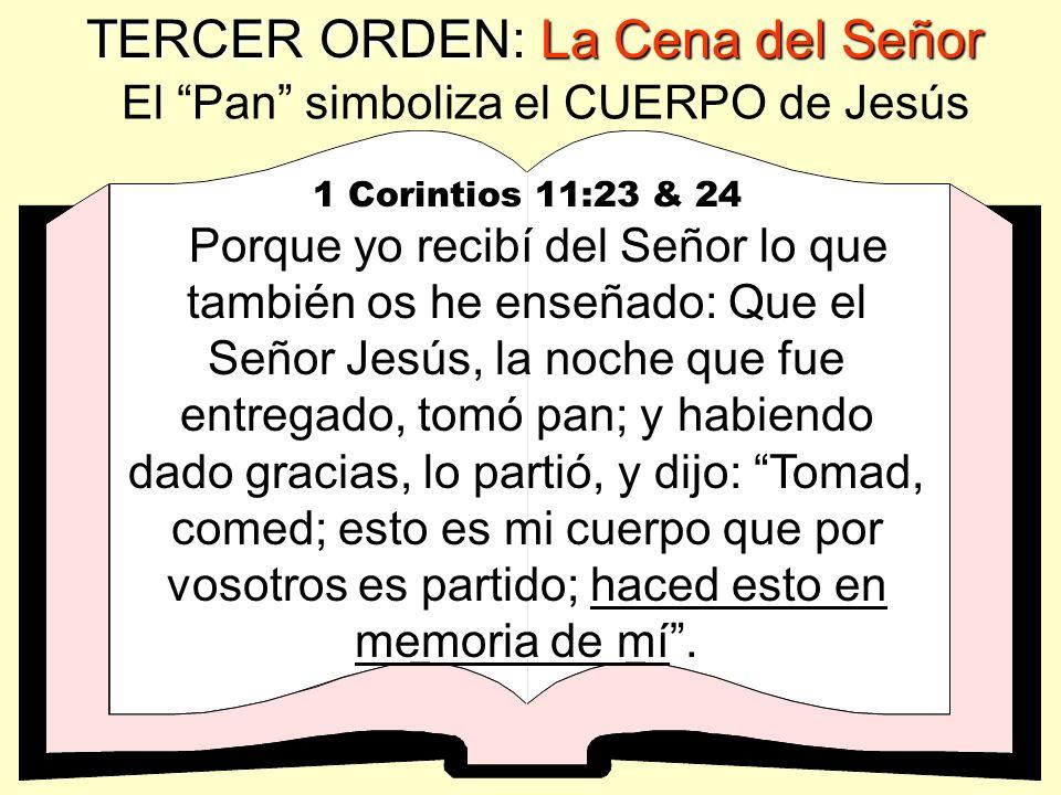 TERCER ORDEN: La Cena del Señor CENA DEL SEÑOR LA CENA DEL SEÑOR es una ordenanza divina de Dios solo para CREYENTES.