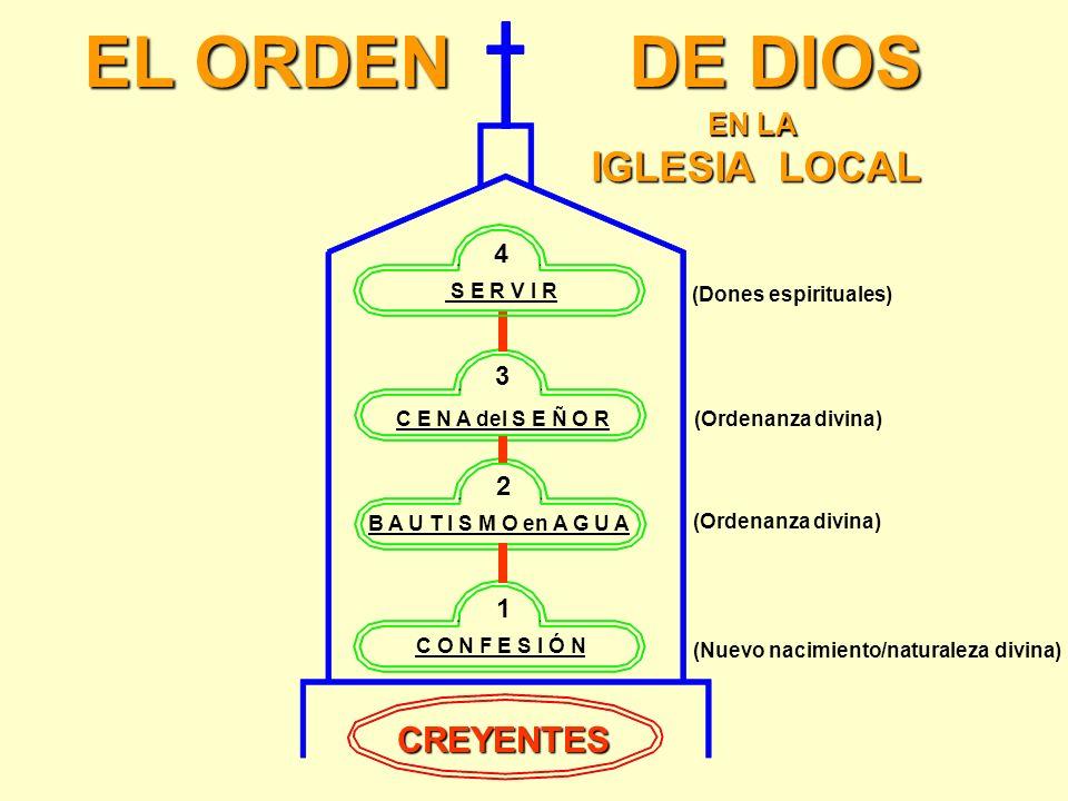 CUARTO ORDEN: Dones espirituales USAR ¡LOS CREYENTES DEBEN USAR SU DON ESPIRITUAL! 1Pedro 4:10 CADA UNO SEGÚN EL DON QUE HA RECIBIDO, MINÍSTRELO A LOS