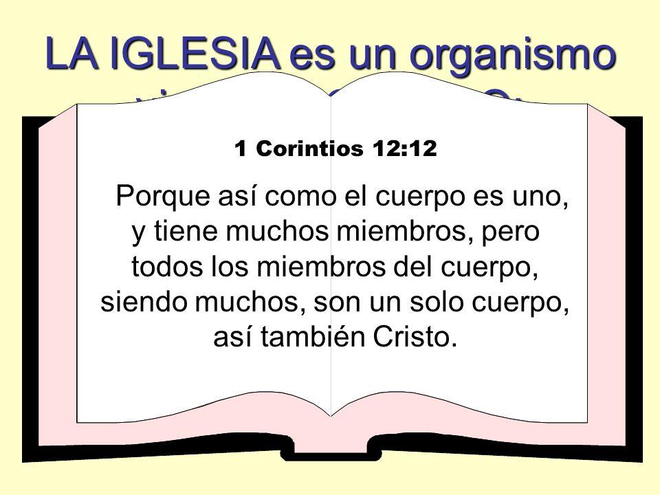 LA IGLESIA es un organismo vivo o un CUERPO: 1 Corintios 12:12 Porque así como el cuerpo es uno, y tiene muchos miembros, pero todos los miembros del cuerpo, siendo muchos, son un solo cuerpo, así también Cristo.