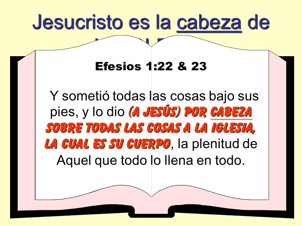 Jesucristo es la cabeza de LA IGLESIA Colosenses 1:18 ÉL (jesÚs) Es LA CABEZA DEL CUERPO QUE ES LA IGLESIA, ÉL (jesÚs) Es LA CABEZA DEL CUERPO QUE ES