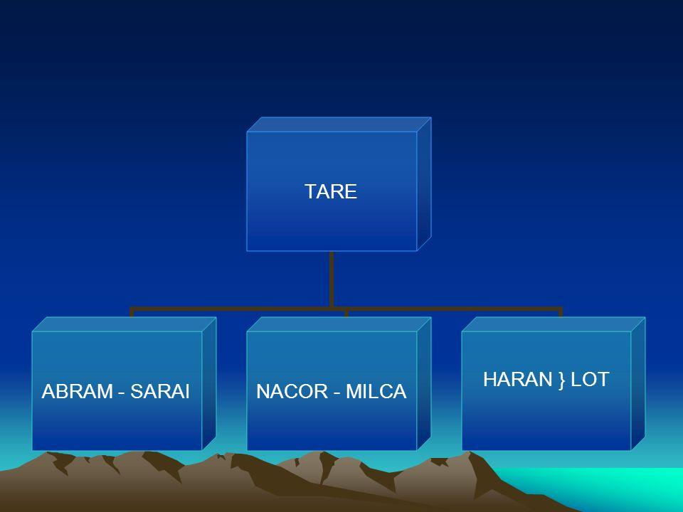 TARE ABRAM - SARAI NACOR - MILCA HARAN } LOT