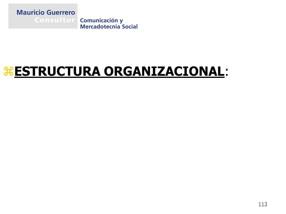 113 zESTRUCTURA ORGANIZACIONAL: