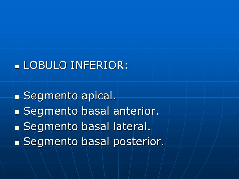 LOBULO INFERIOR: LOBULO INFERIOR: Segmento apical. Segmento apical. Segmento basal anterior. Segmento basal anterior. Segmento basal lateral. Segmento