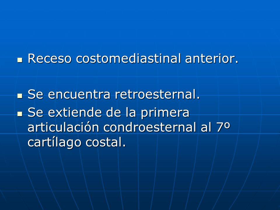 Receso costomediastinal anterior. Receso costomediastinal anterior. Se encuentra retroesternal. Se encuentra retroesternal. Se extiende de la primera