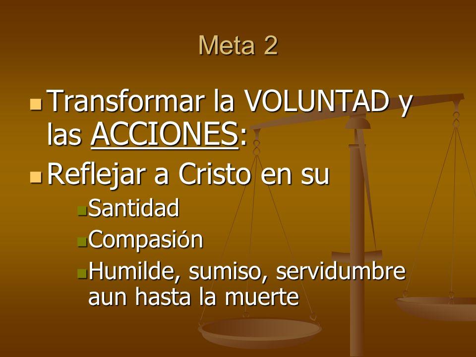 Meta 2 Transformar la VOLUNTAD y las ACCIONES : Transformar la VOLUNTAD y las ACCIONES : Reflejar a Cristo en su Reflejar a Cristo en su Santidad Sant
