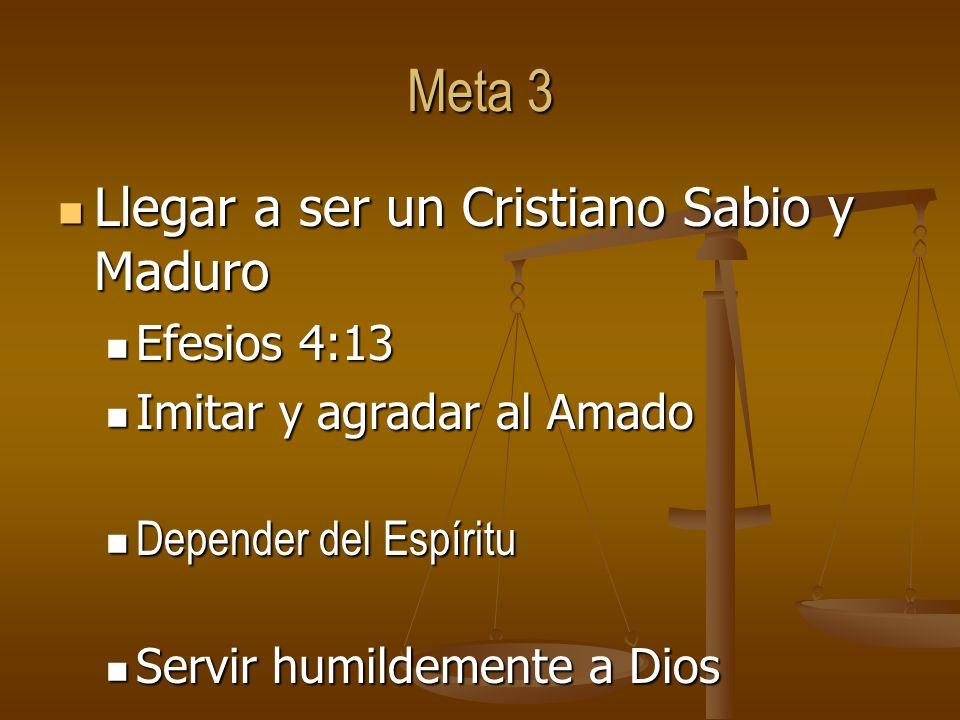 Meta 3 Llegar a ser un Cristiano Sabio y Maduro Llegar a ser un Cristiano Sabio y Maduro Efesios 4:13 Efesios 4:13 Imitar y agradar al Amado Imitar y