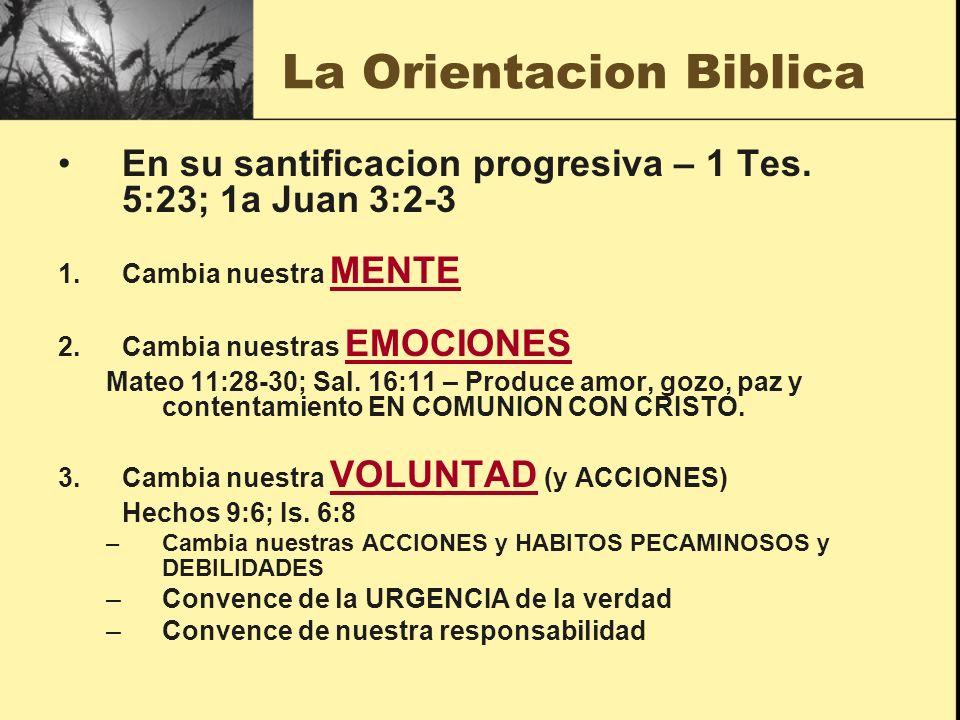 La Orientacion Biblica En su santificacion progresiva – 1 Tes. 5:23; 1a Juan 3:2-3 1.Cambia nuestra MENTE 2.Cambia nuestras EMOCIONES Mateo 11:28-30;