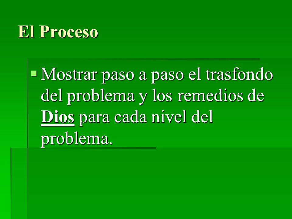 El Proceso Mostrar paso a paso el trasfondo del problema y los remedios de Dios para cada nivel del problema. Mostrar paso a paso el trasfondo del pro
