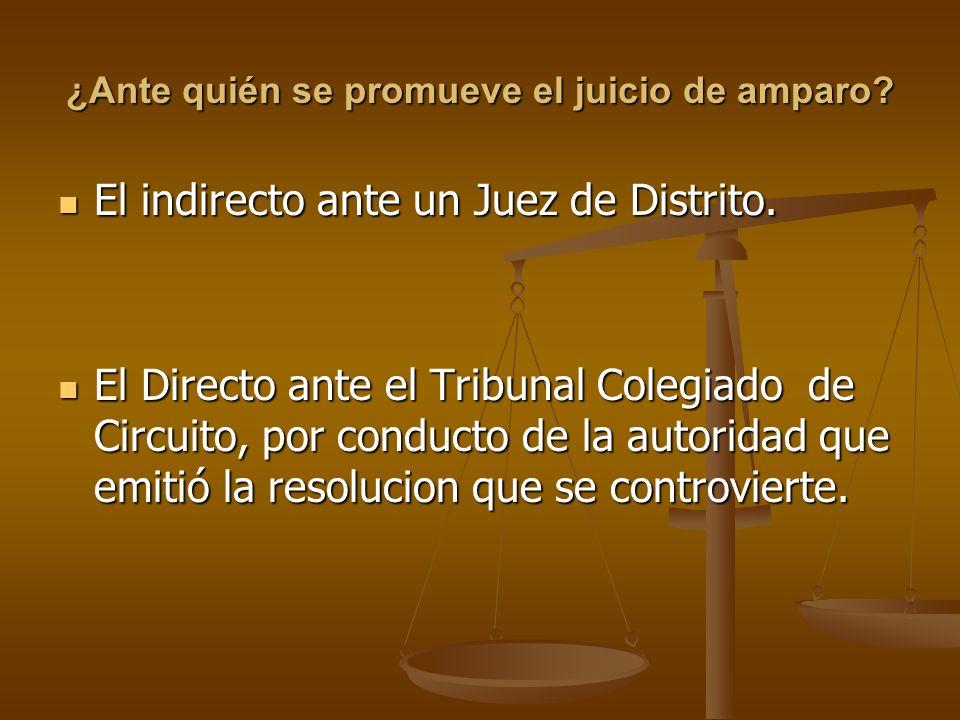 ¿Ante quién se promueve el juicio de amparo? El indirecto ante un Juez de Distrito. El indirecto ante un Juez de Distrito. El Directo ante el Tribunal