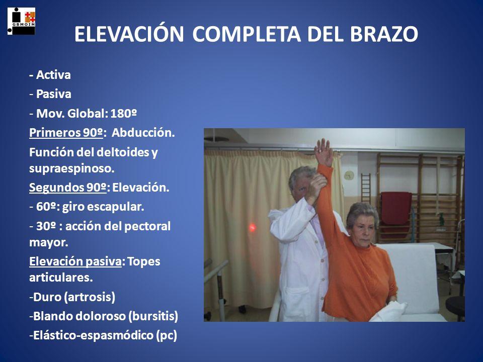 ELEVACIÓN COMPLETA DEL BRAZO - Activa - Pasiva - Mov. Global: 180º Primeros 90º: Abducción. Función del deltoides y supraespinoso. Segundos 90º: Eleva