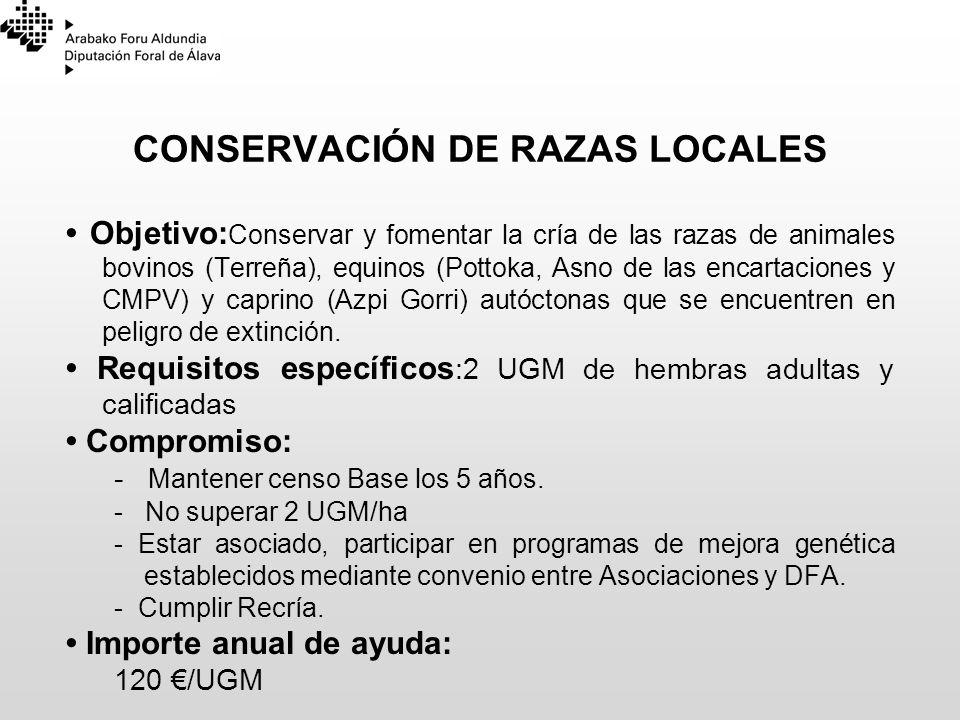 CONSERVACIÓN DE RAZAS LOCALES Objetivo: Conservar y fomentar la cría de las razas de animales bovinos (Terreña), equinos (Pottoka, Asno de las encarta