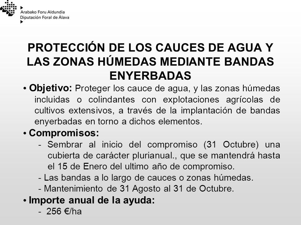 PROTECCIÓN DE LOS CAUCES DE AGUA Y LAS ZONAS HÚMEDAS MEDIANTE BANDAS ENYERBADAS Objetivo: Proteger los cauce de agua, y las zonas húmedas incluidas o