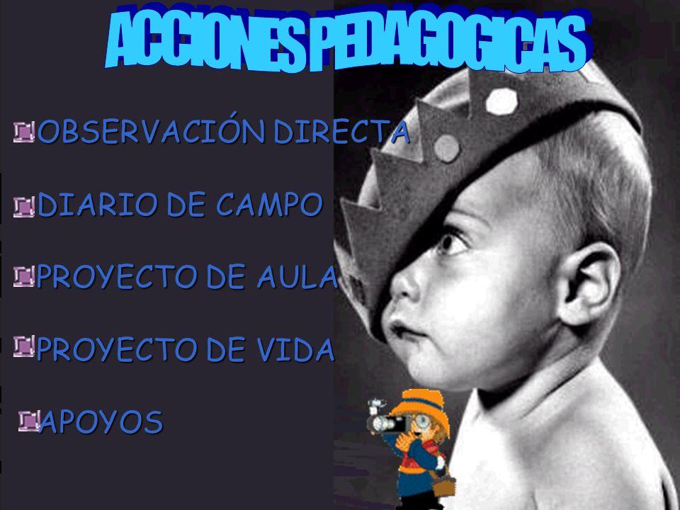 OBSERVACIÓN DIRECTA DIARIO DE CAMPO PROYECTO DE AULA PROYECTO DE VIDA APOYOS