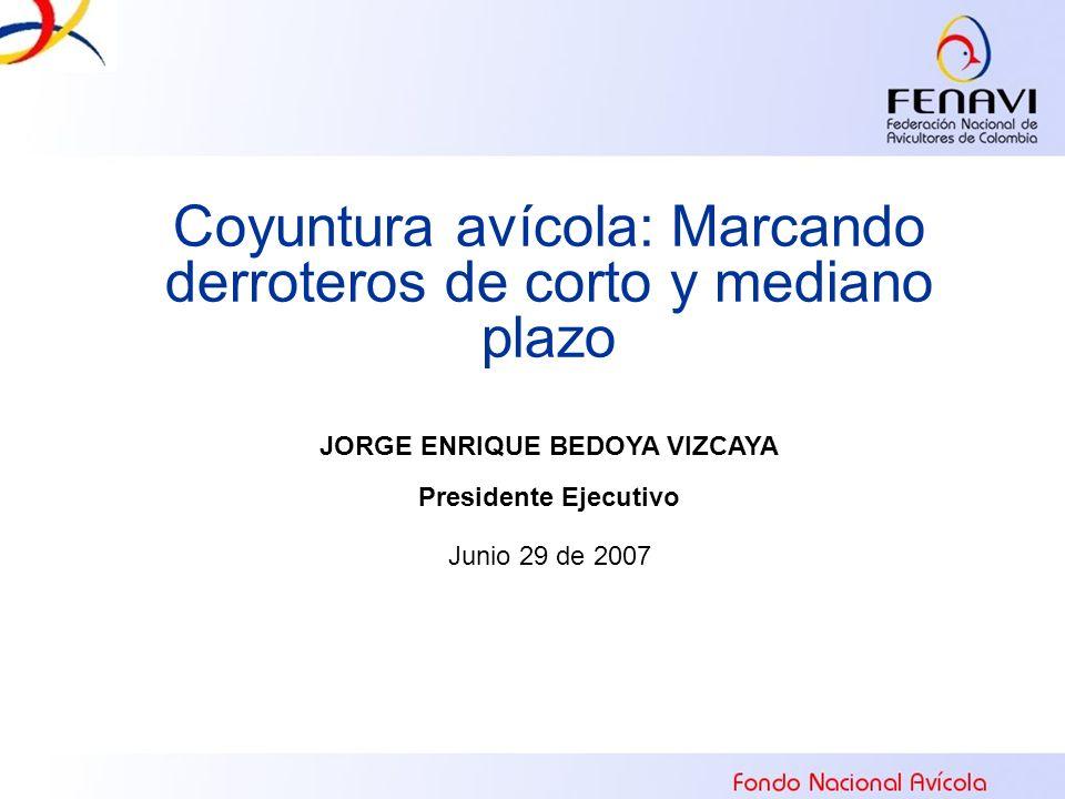 Coyuntura avícola: Marcando derroteros de corto y mediano plazo JORGE ENRIQUE BEDOYA VIZCAYA Presidente Ejecutivo Junio 29 de 2007