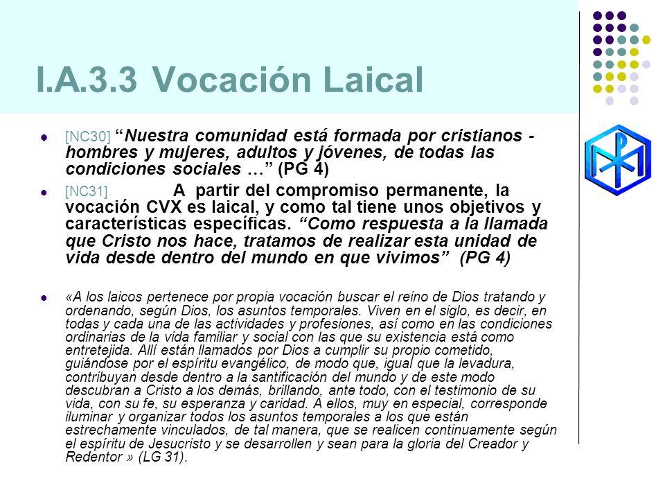 I.A.3.3 Vocación Laical [NC30]Nuestra comunidad está formada por cristianos - hombres y mujeres, adultos y jóvenes, de todas las condiciones sociales