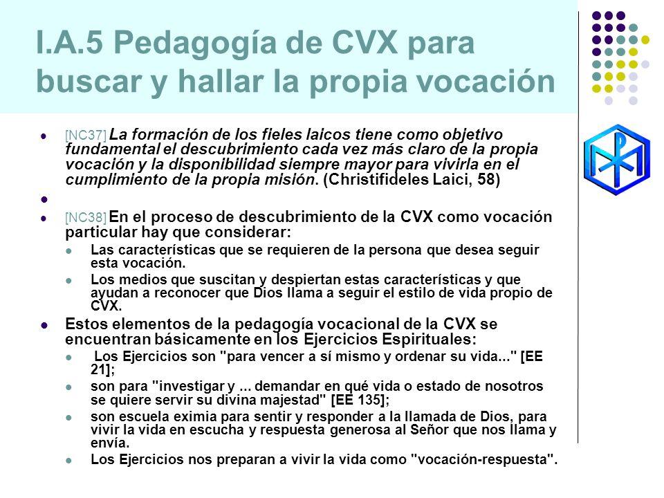 I.A.5 Pedagogía de CVX para buscar y hallar la propia vocación [NC37] La formación de los fieles laicos tiene como objetivo fundamental el descubrimie