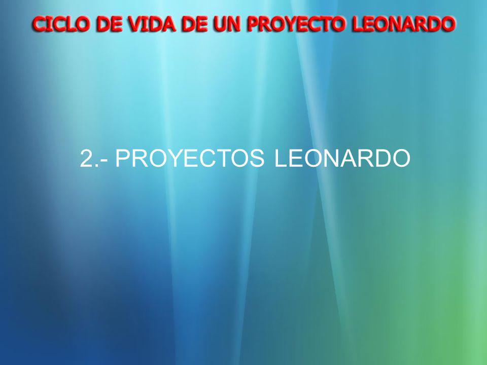 2.- PROYECTOS LEONARDO