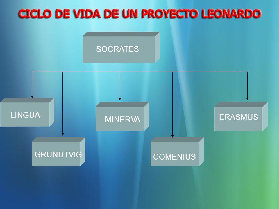 6.- Financiación La subvención Leonardo no está concebida para cubrir la totalidad de los costes de movilidad, por lo que se recomienda que los beneficiarios busquen fuentes de cofinanciación.