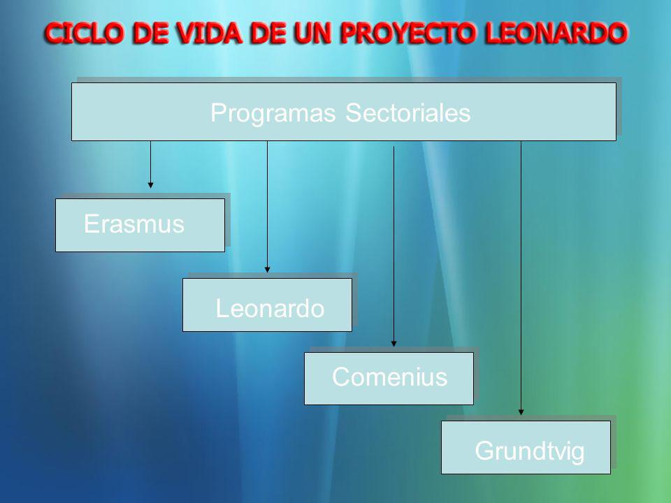 Programas Sectoriales Erasmus Leonardo Comenius Grundtvig